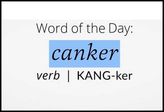 Learn Canker Definition Etymology and Synonyms