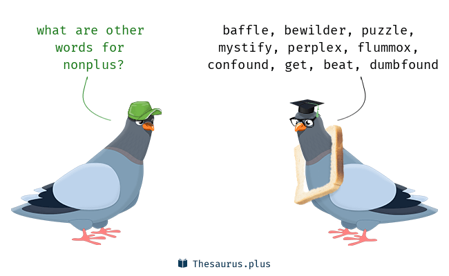 NONPLUS Meaning NONPLUS Etymology NONPLUS Synonyms and Antonyms birds Chatsifieds