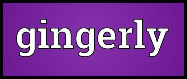 Gingerly Meaning Gingerly Etymology Gingerly Synonyms Chatsifieds