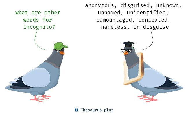 Incognito Meaning Incognito Etymology Incognito Synonyms Antonyms definition Chatsifieds